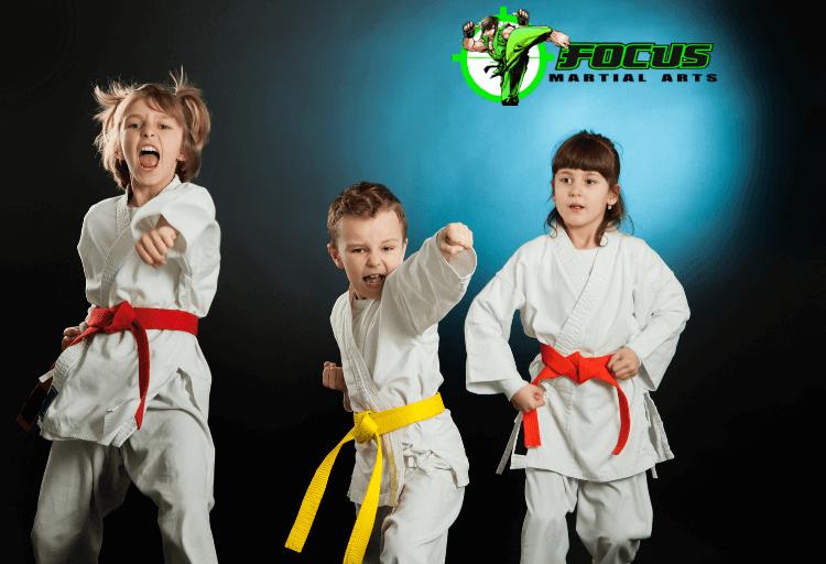 Kids Karate Classes Fma, Focus Martial Arts Classes Brisbane, Queensland