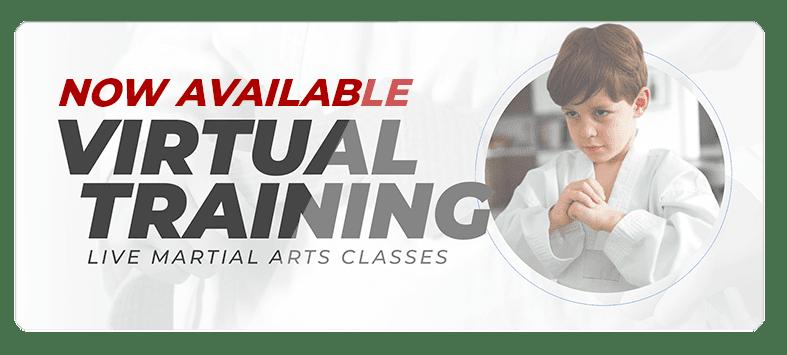 VIRTUALPOPUPSPARK.1.1, Focus Martial Arts Classes Brisbane, Queensland