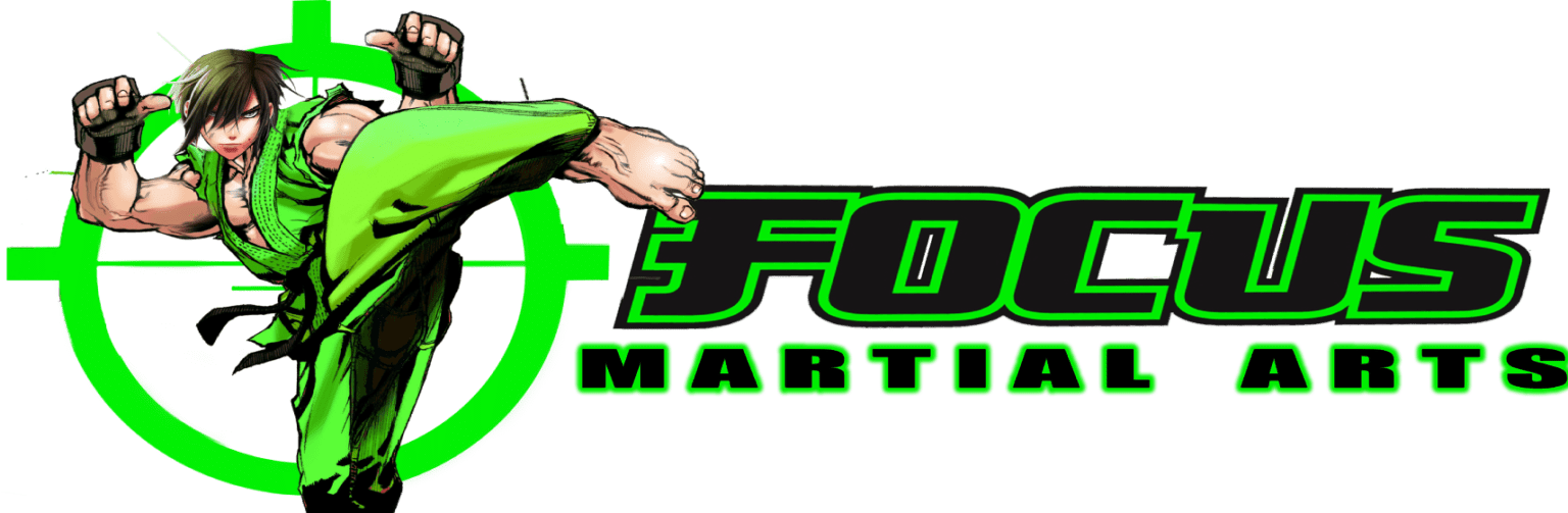 focus martial arts brisbane and gold coast